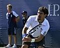 2013 US Open (Tennis) - Fabio Fognini (9664844460).jpg