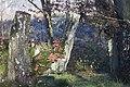 20141113 013 Well De Hamert Paddenstoel (15163025504).jpg