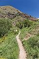 2014 Prowincja Sjunik, Ścieżka do wodospadu Szaki (03).jpg