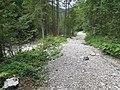 2017-07-22 (06) Lechnergraben at Dürrenstein (Ybbstaler Alpen).jpg