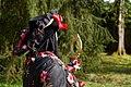 2018-04-15 10-35-07 carnaval-venitien-hericourt.jpg