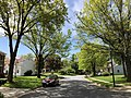 2020-05-02 11 21 49 View south along Thorngate Drive near Brass Harness Court in the Franklin Farm section of Oak Hill, Fairfax County, Virginia.jpg