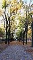20201024 115422 Park Sienkiewicza in Łódź.jpg