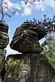 20210518. Sächsische Schweiz.Rauenstein.-055.3.jpg