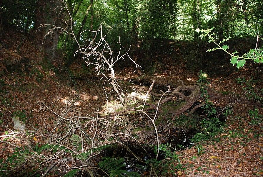 Douves du château (début 16ème) du Grand Perrien, Lanrodec, Côtes d'Armor