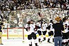 AHL (39684513145).jpg