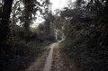 ASC Leiden - F. van der Kraaij Collection - 05 - 081 - A bush trail near Ganta. An unpaved road from Ganta to Zwedru - Ganta, Nimba county, Liberia, 1976.tif