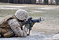 A U.S. Marine with Combat Logistics Battalion 6, 2nd Marine Logistics Group, based at Camp Lejeune, N.C., hones his marksmanship skills during the Enhanced Marksmanship Program at Fort Pickett, Va., March 21 130321-A-SM601-629.jpg