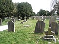 A guided tour of Broadwater ^ Worthing Cemetery (12) - geograph.org.uk - 2337641.jpg