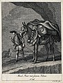 A muzzled, harnessed and loaded mule and its muleteer are st Wellcome V0021153EL.jpg