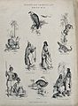Abyssinia (Ethiopia); Animals and indigenous tribes, includi Wellcome V0022855ER.jpg