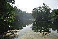 Acharya Jagadish Chandra Bose Indian Botanic Garden - Howrah 2011-01-08 9856.JPG