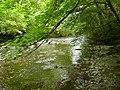 Afon Efyrnwy - River Vyrnwy - geograph.org.uk - 1405556.jpg