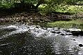 Afon Llugwy - geograph.org.uk - 1996526.jpg