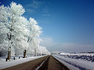 Frost (temperature) - Hoar frost
