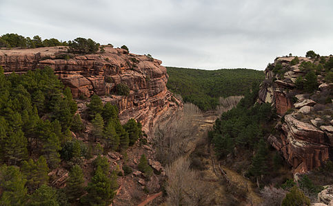 Peña la Cruz, Pinares de Rodeno (in English Cross Rock, Sandstone Pine Forest) is a protected landscape than spans 6 829,05 ha and is distributed over the municipalities of Albarracín, Bezas and Gea de Albarracín, province of Teruel, Aragón, Spain