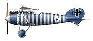 Albatros D.V Jasta 79b Seite li. klein72