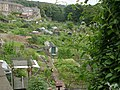 Allotments - Pye Nest Road - geograph.org.uk - 910202.jpg