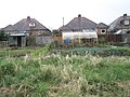 Allotments between Ingeledene Close and the Bidbury Schools footpath - geograph.org.uk - 736895.jpg