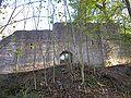 Alte Burg Neuburg 4.jpg