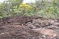 Alto Araguaia - State of Mato Grosso, Brazil - panoramio (1166).jpg
