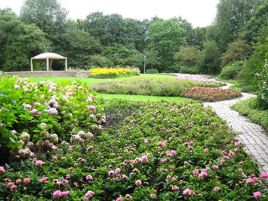 Roseraie de l'Amstelpark à Amsterdam - Photo d'Arthena
