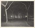 An Icy Night MET DP244496.jpg