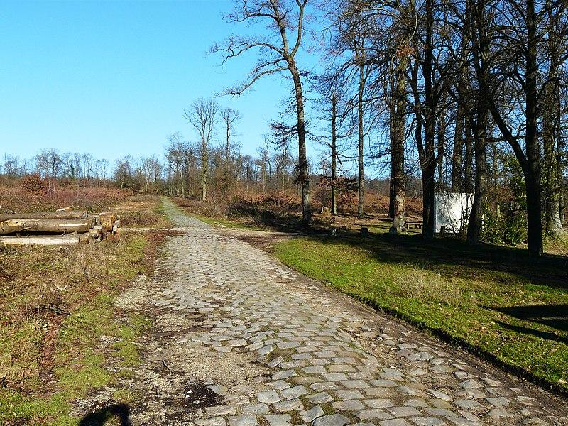 Ancienne voie pavée