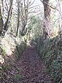 Ancient trackway leading from Bareppa to Maenporth - geograph.org.uk - 713269.jpg