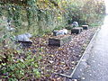 Animal sculptures on the Fallowfield Loop near Slade Lane (Burnage Lane) (8199560363).jpg