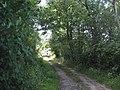 Approaching Crochan Caffo - geograph.org.uk - 893245.jpg