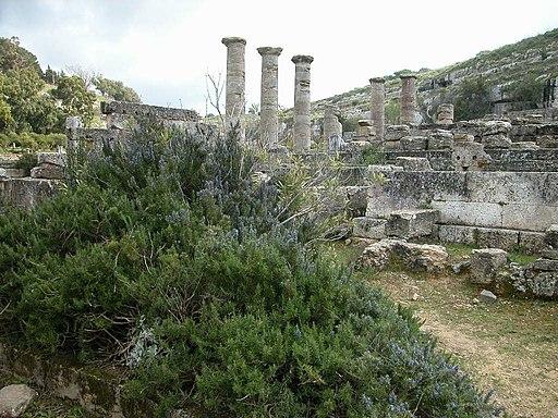 Archaeological Site of Cyrene-109028