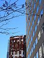 Architectural Detail - Downtown - Cleveland, Ohio 2014-10-09 (by Adam Jones).jpg