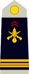 Army-FRA-OR-09a.svg