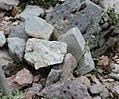 Artemisia nitida GiardinoBotanicoAlpinoViote 20170902 E.jpg