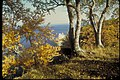 Autumn Views at Pictured Rocks National Lakeshore, Michigan (22944f75-48b9-45ef-9d42-b674d4f18dc1).jpg