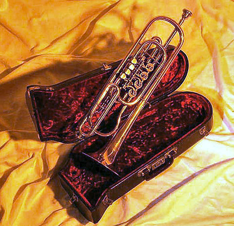Bass trumpet in C with rotary valves Basstrompete.jpg