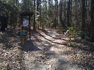 South Toledo Bend State Park - Image: Bald Eagle Nest Trail at South Toledo Bend State Park
