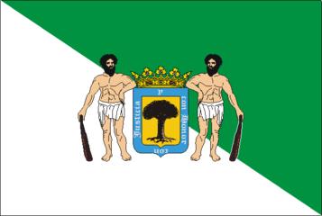 Bandera valsequillo.png