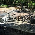 Banteay Srei, Cambodia - panoramio (5).jpg