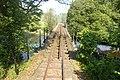 Banwy railway bridge - geograph.org.uk - 1333580.jpg