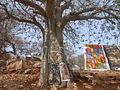 Baobab Gorée.JPG