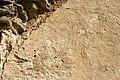 Bara ödekyrka - KMB - 16001000147864.jpg