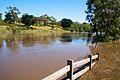Barwon River in flood at Newtown.jpg