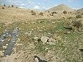 Basak Yayla1 - panoramio.jpg
