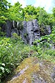 Basaltfelsen. Scheibenberg..IMG 9590WI.jpg