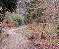 Batsford Arboretum (8) - geograph.org.uk - 1142694.jpg