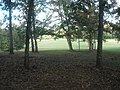 Battlefield from woods, Horseshoe Bend NMP.jpg