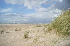 Jammerbugt Municipality - Jammerbugt-beach near Blokhus