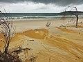 Beach near Cooloola NP - panoramio.jpg